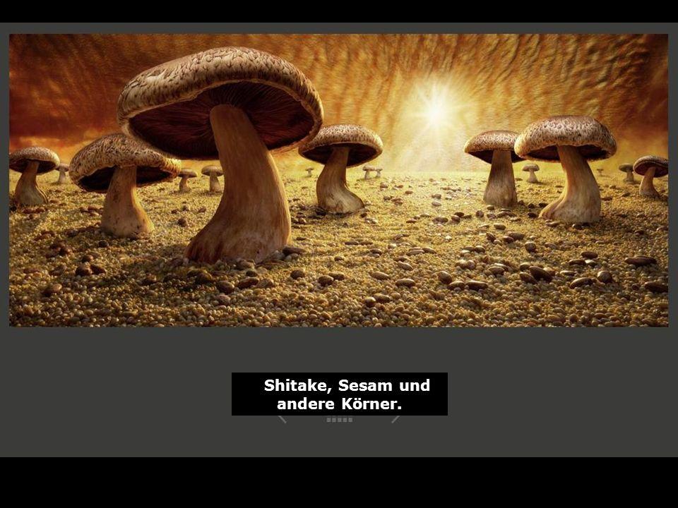 Shitake, Sesam und andere Körner.