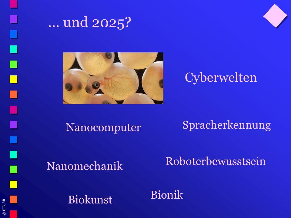 ... und 2025 Cyberwelten Spracherkennung Nanocomputer