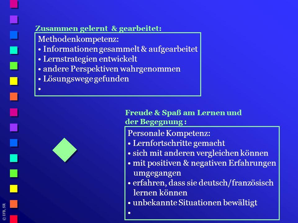 Informationen gesammelt & aufgearbeitet Lernstrategien entwickelt