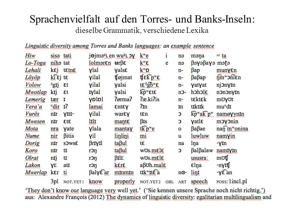 Sprachenvielfalt auf den Torres- und Banks-Inseln: dieselbe Grammatik, verschiedene Lexika