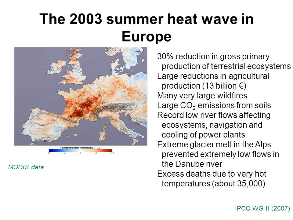 The 2003 summer heat wave in Europe