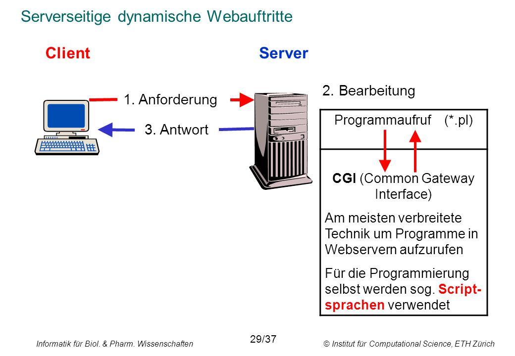 Serverseitige dynamische Webauftritte