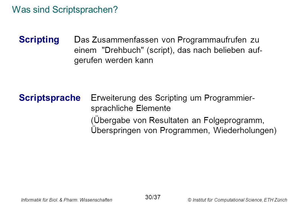 Was sind Scriptsprachen