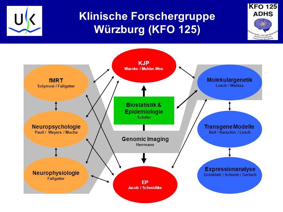 Klinische Forschergruppe Würzburg (KFO 125)