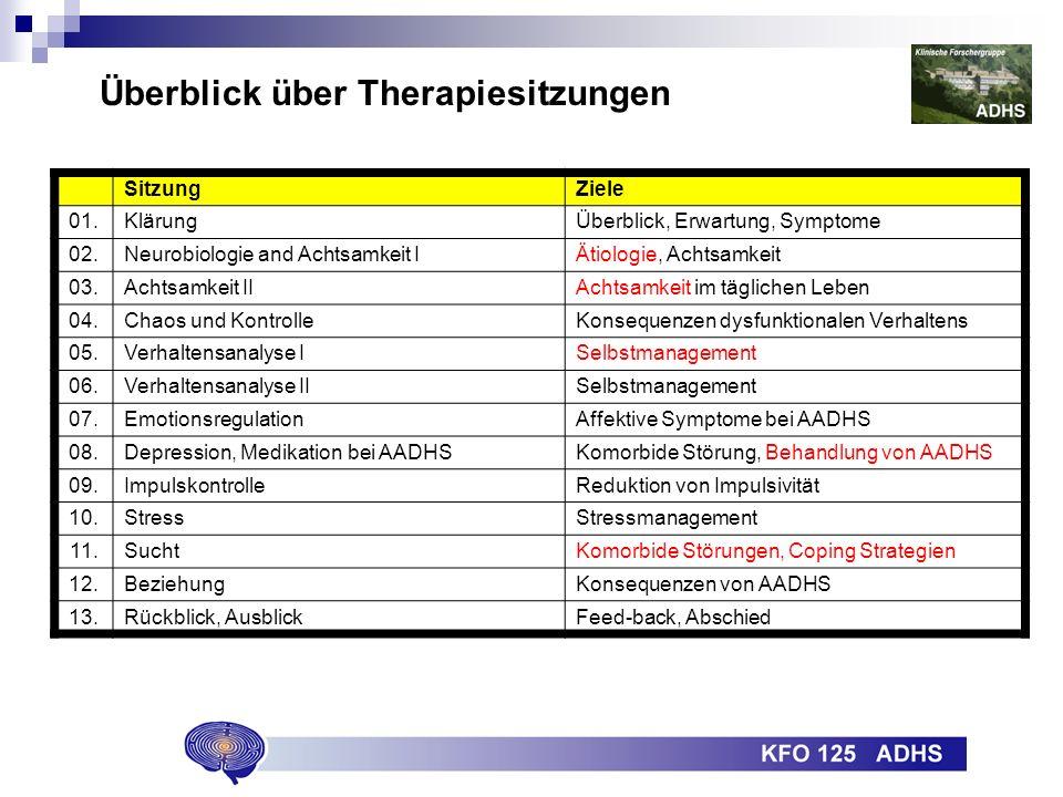 Überblick über Therapiesitzungen