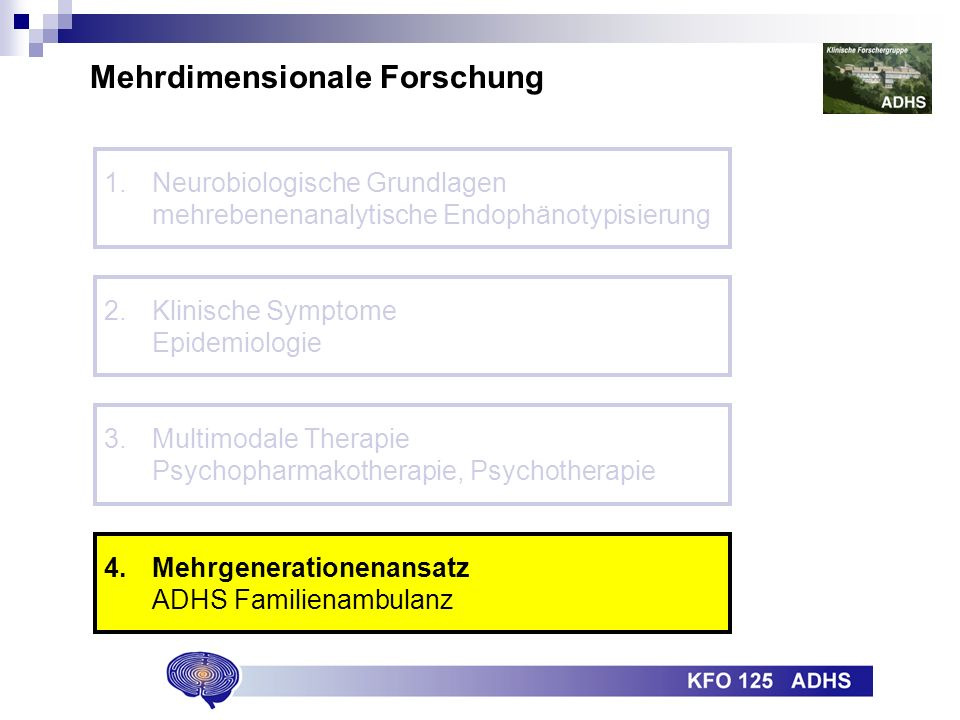 Mehrdimensionale Forschung