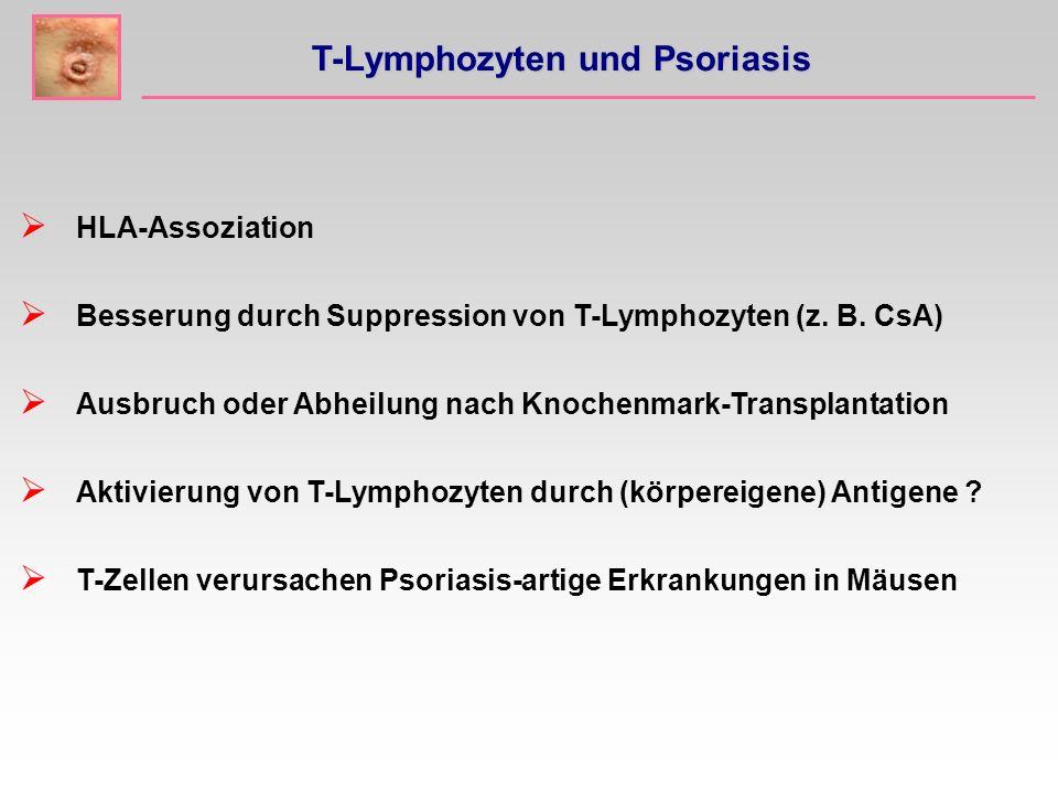 T-Lymphozyten und Psoriasis