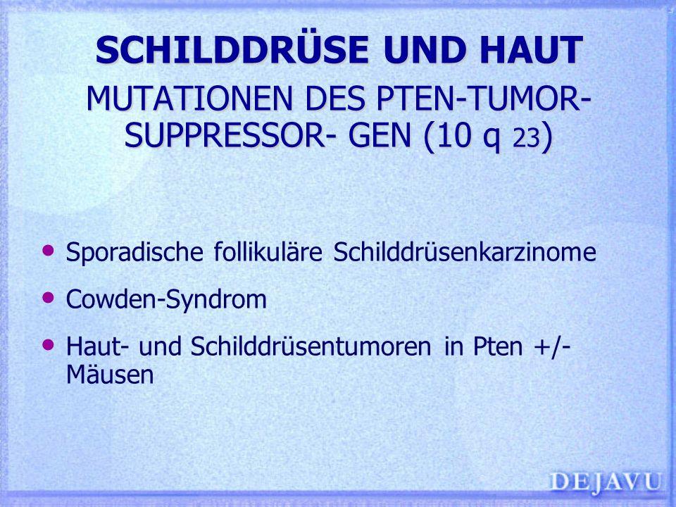SCHILDDRÜSE UND HAUT MUTATIONEN DES PTEN-TUMOR- SUPPRESSOR- GEN (10 q 23)