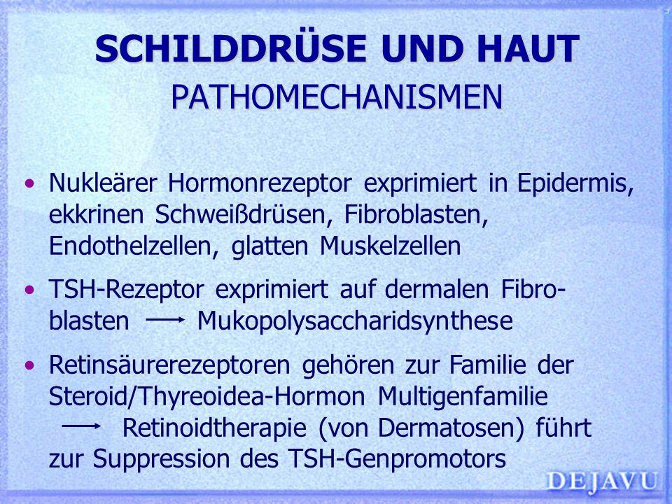 Schön Ekkrinen Schweißdrüsen Ideen - Menschliche Anatomie Bilder ...