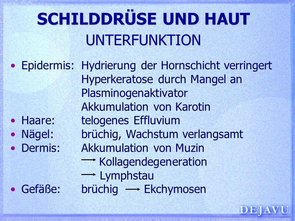 SCHILDDRÜSE UND HAUT UNTERFUNKTION