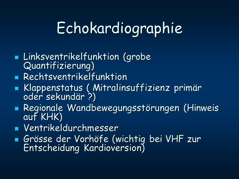 Echokardiographie Linksventrikelfunktion (grobe Quantifizierung)