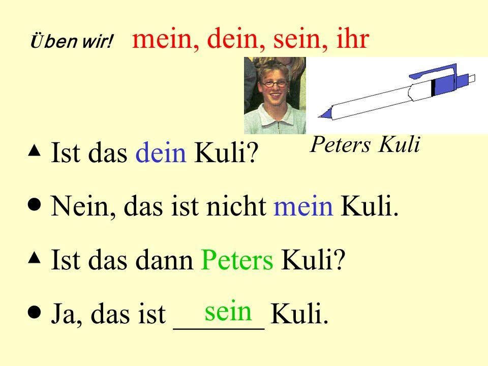 ● Nein, das ist nicht mein Kuli. ▲ Ist das dann Peters Kuli