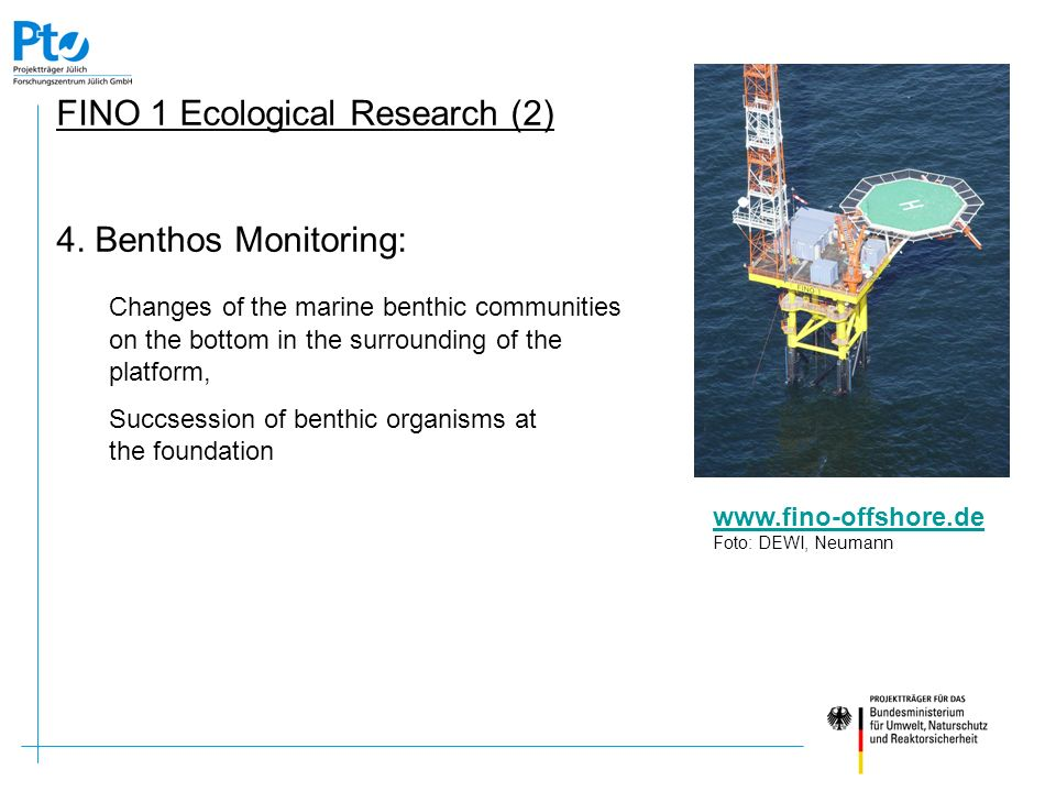 FINO 1 Ecological Research (2)