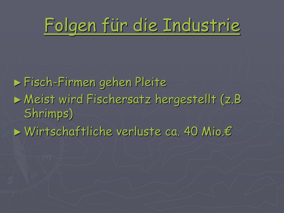 Folgen für die Industrie