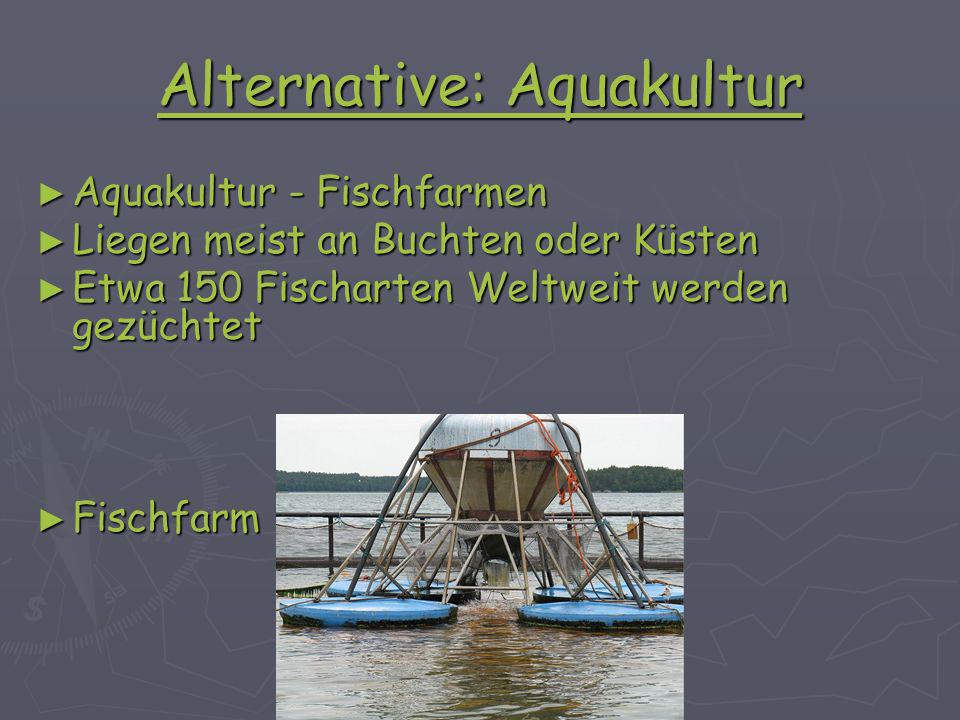 Alternative: Aquakultur