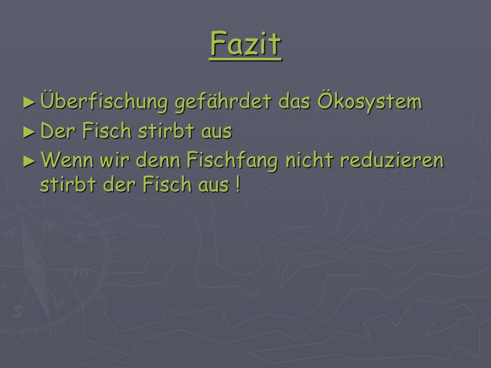 Fazit Überfischung gefährdet das Ökosystem Der Fisch stirbt aus