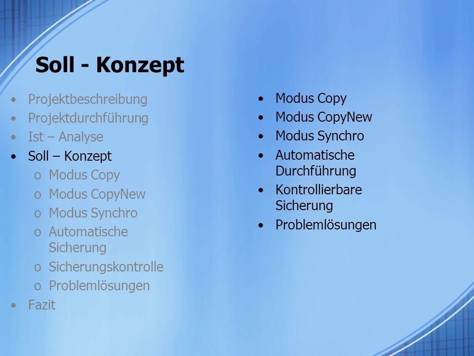 Soll - Konzept Projektbeschreibung Modus Copy Projektdurchführung