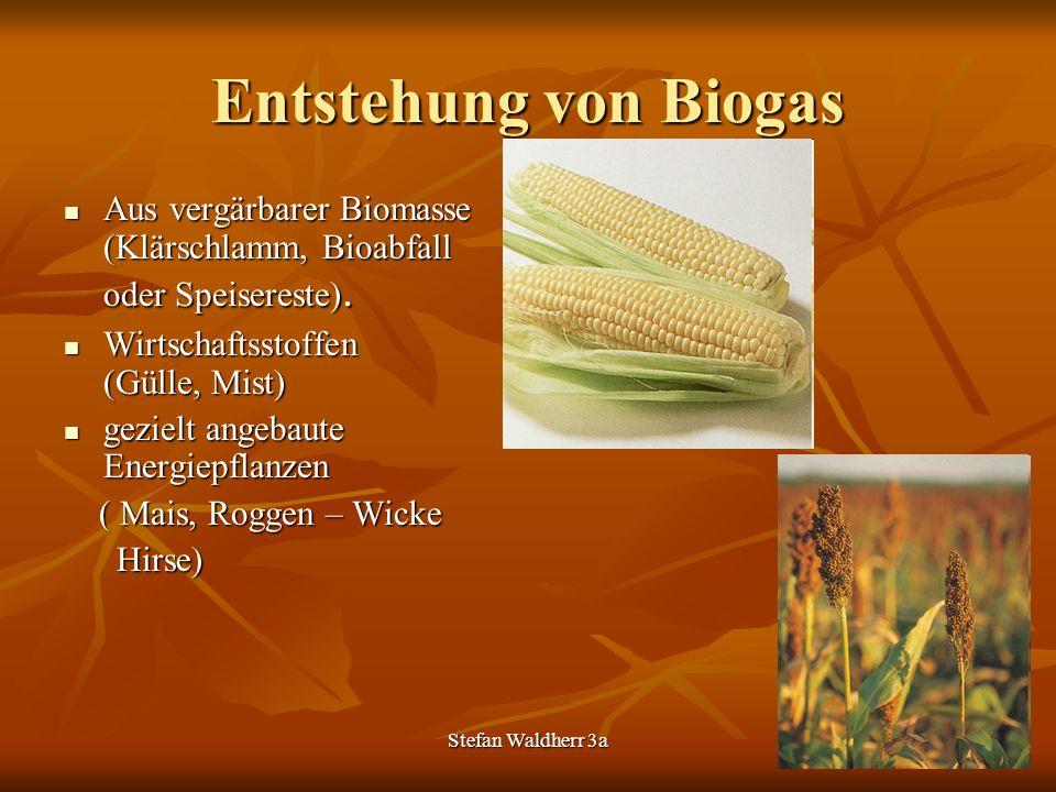 Entstehung von Biogas Aus vergärbarer Biomasse (Klärschlamm, Bioabfall oder Speisereste). Wirtschaftsstoffen (Gülle, Mist)