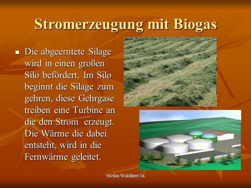 Stromerzeugung mit Biogas