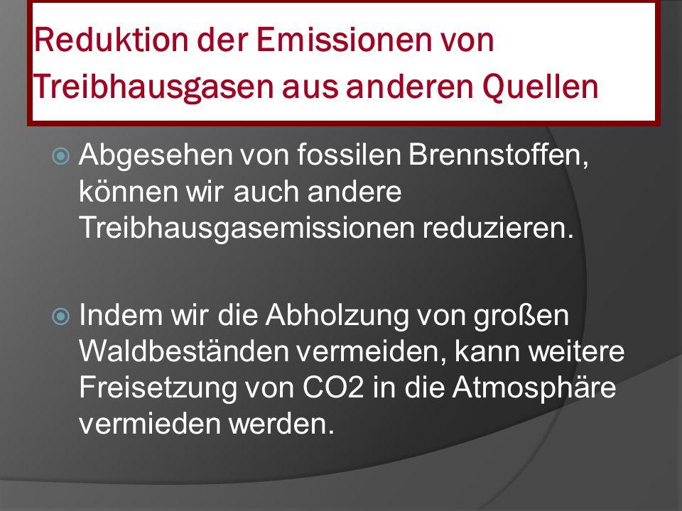 Reduktion der Emissionen von Treibhausgasen aus anderen Quellen