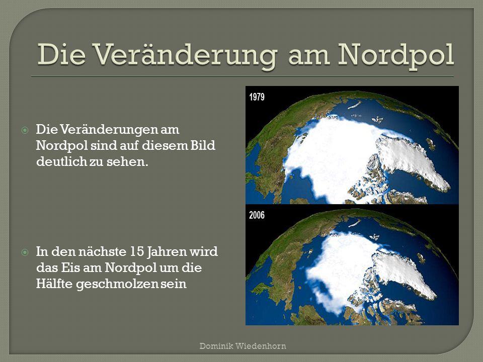 Die Veränderung am Nordpol