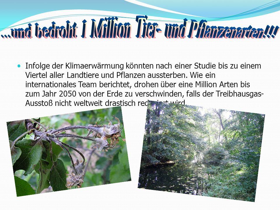 ...und bedroht 1 Million Tier- und Pflanzenarten!!!