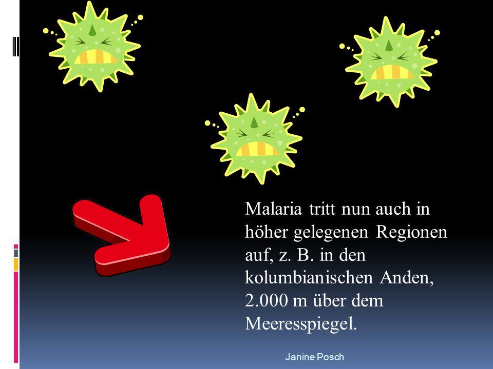 Malaria tritt nun auch in höher gelegenen Regionen auf, z. B