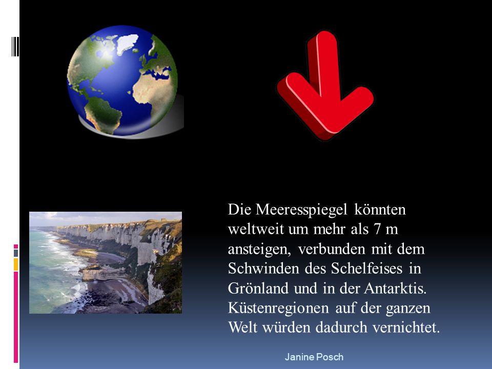 Die Meeresspiegel könnten weltweit um mehr als 7 m ansteigen, verbunden mit dem Schwinden des Schelfeises in Grönland und in der Antarktis. Küstenregionen auf der ganzen Welt würden dadurch vernichtet.