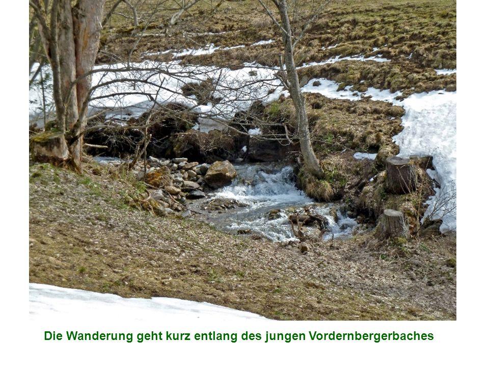 Die Wanderung geht kurz entlang des jungen Vordernbergerbaches