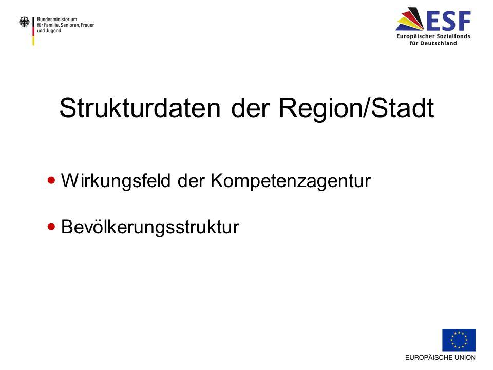 Strukturdaten der Region/Stadt