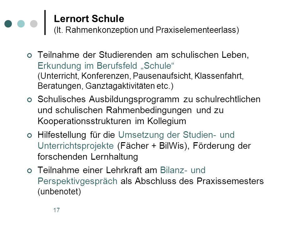 Lernort Schule (lt. Rahmenkonzeption und Praxiselementeerlass)