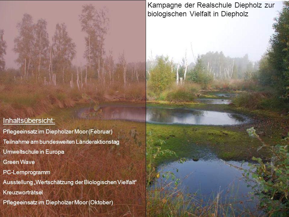 Kampagne der Realschule Diepholz zur biologischen Vielfalt in Diepholz