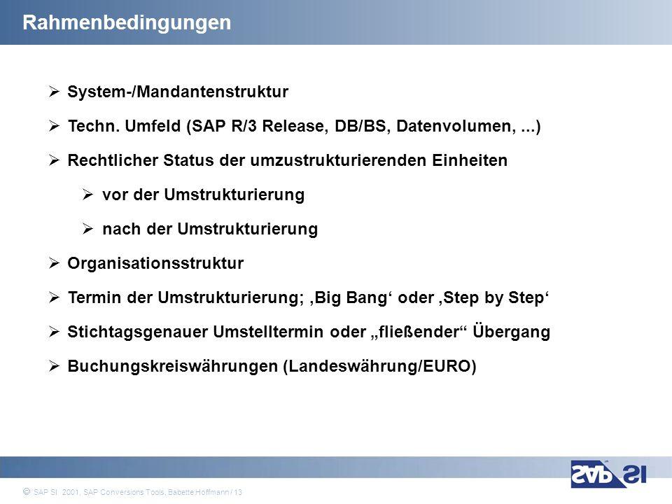 Rahmenbedingungen System-/Mandantenstruktur