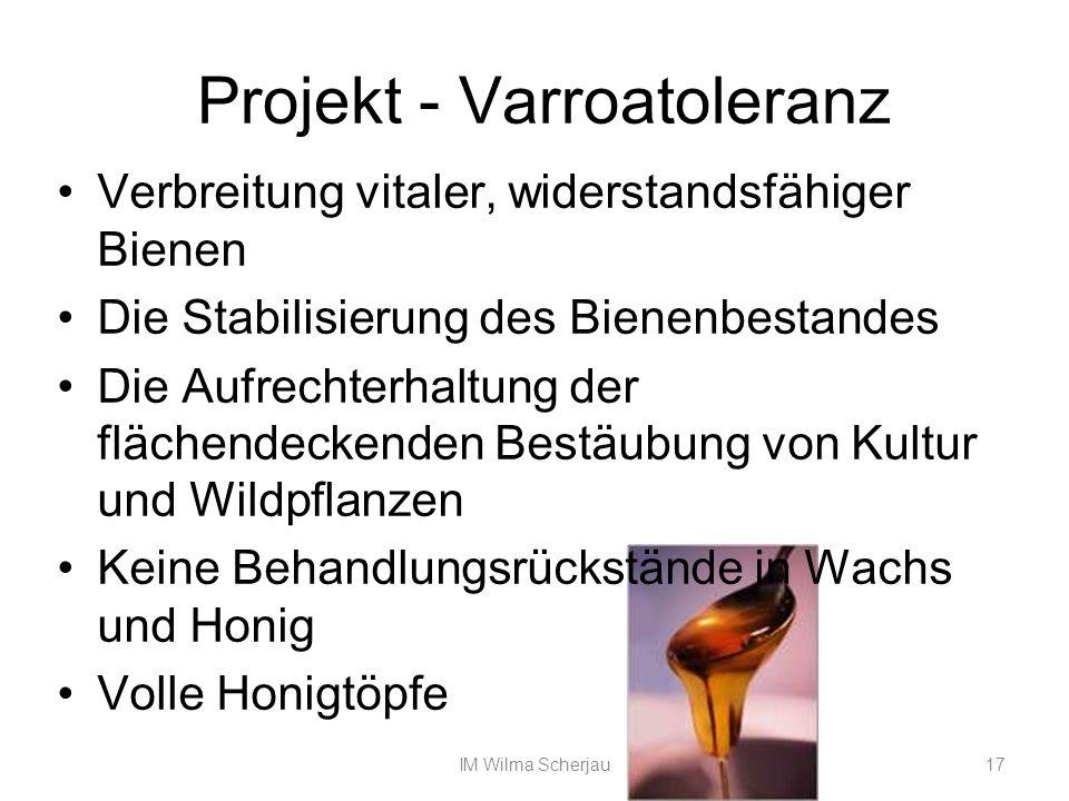 Projekt - Varroatoleranz