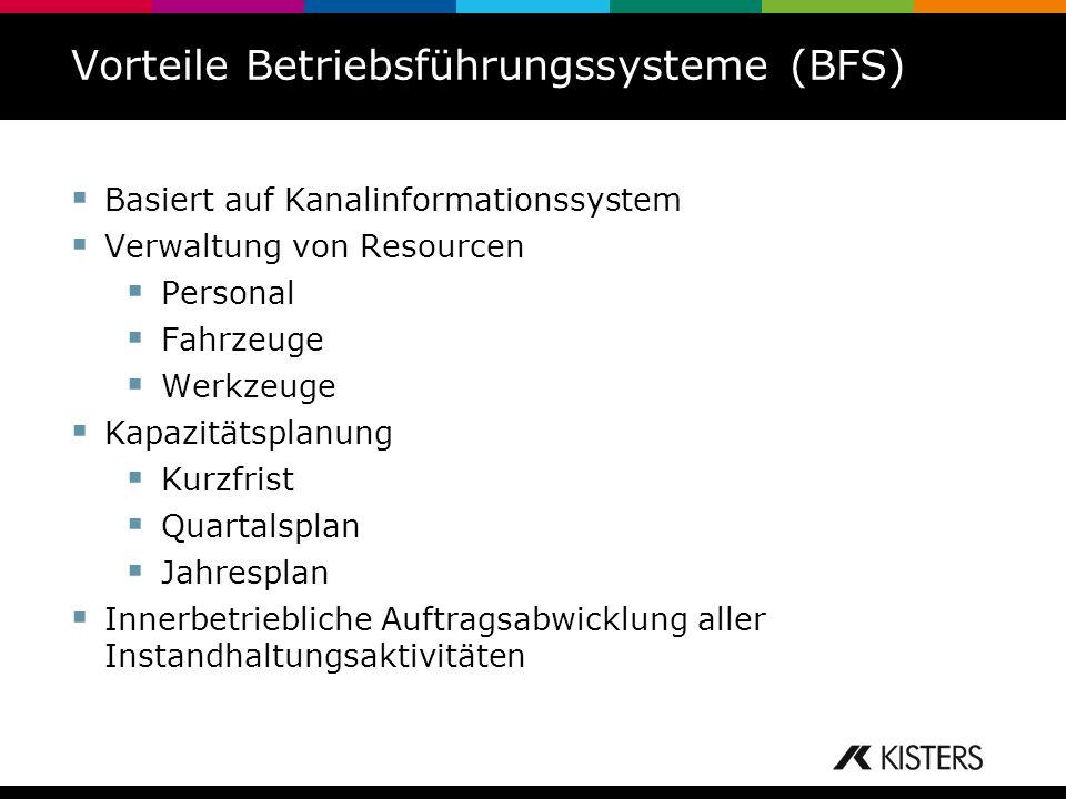 Vorteile Betriebsführungssysteme (BFS)