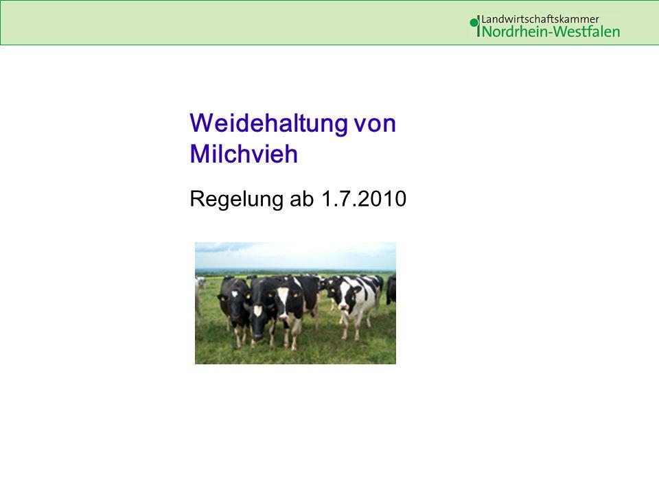 Weidehaltung von Milchvieh