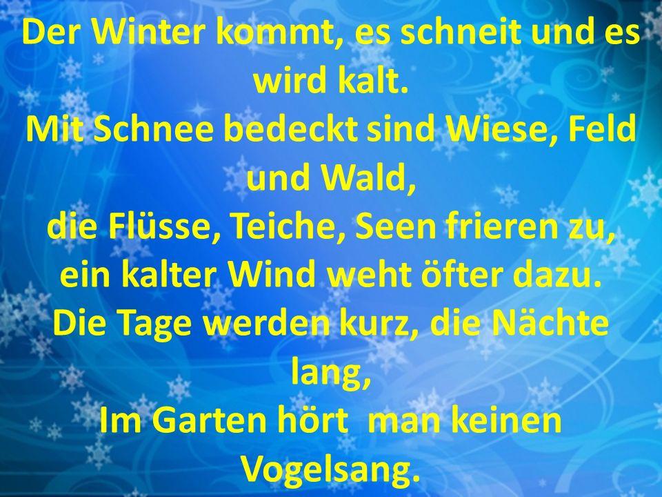 Der Winter kommt, es schneit und es wird kalt.