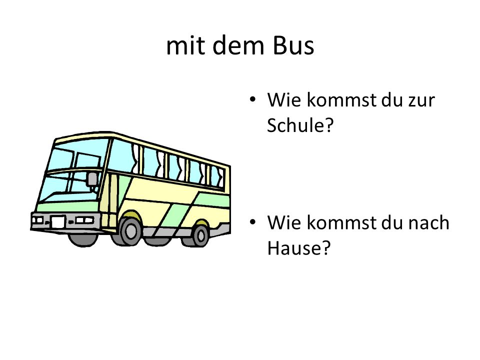 mit dem Bus Wie kommst du zur Schule Wie kommst du nach Hause