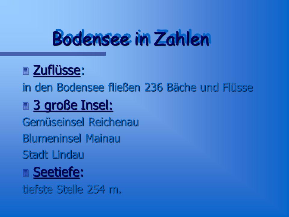 Bodensee in Zahlen Zuflüsse: 3 große Insel: Seetiefe: