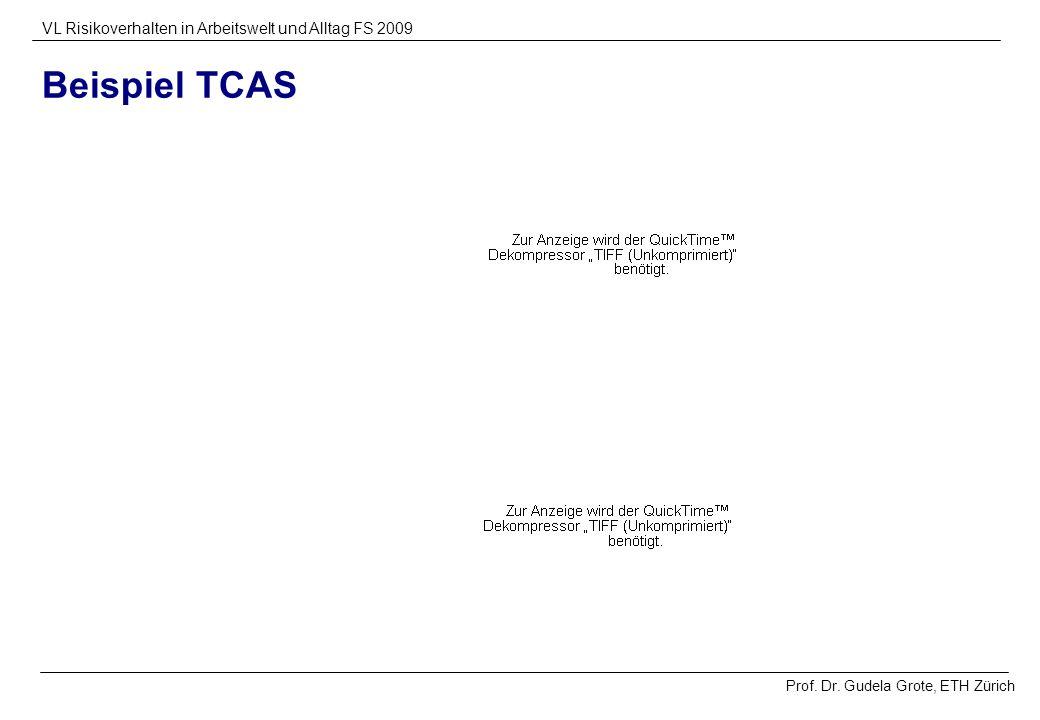 Beispiel TCAS