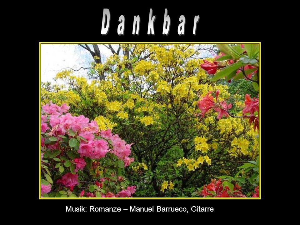 D a n k b a r Musik: Romanze – Manuel Barrueco, Gitarre