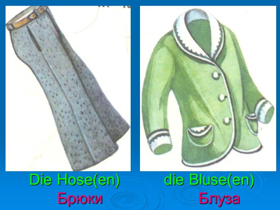 Die Hose(en) die Bluse(en) Брюки Блуза