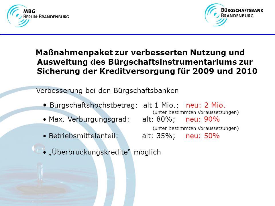 Maßnahmenpaket zur verbesserten Nutzung und Ausweitung des Bürgschaftsinstrumentariums zur Sicherung der Kreditversorgung für 2009 und 2010