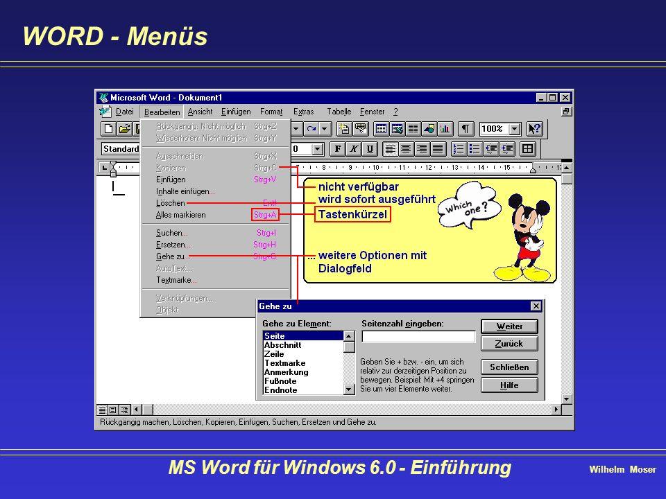MS Word für Windows 6.0 - Einführung