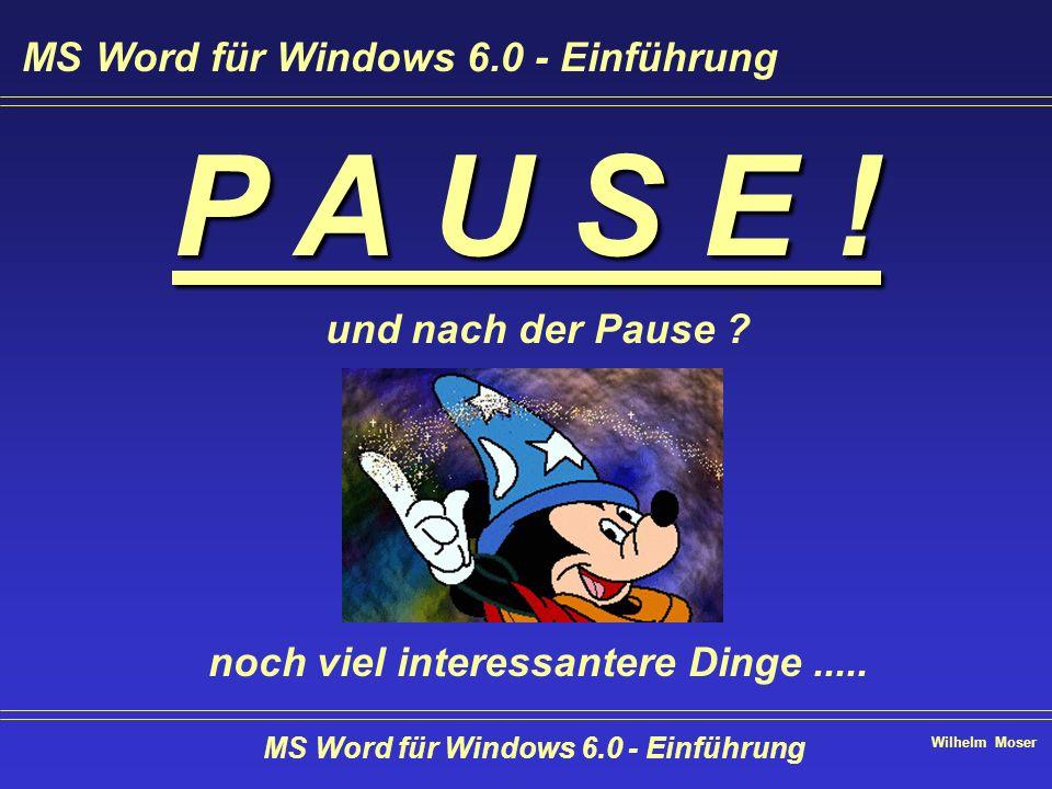 P A U S E ! MS Word für Windows 6.0 - Einführung und nach der Pause