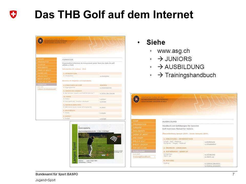 Das THB Golf auf dem Internet