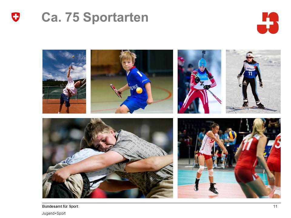 Ca. 75 Sportarten