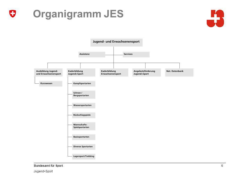 Organigramm JES