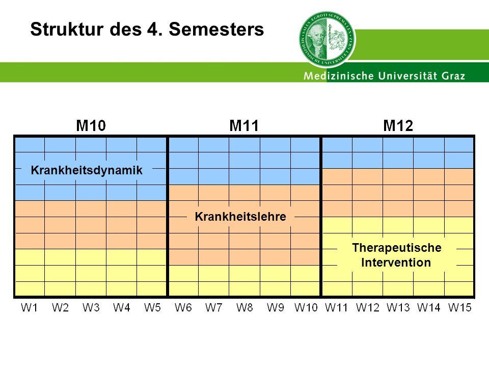 Struktur des 4. Semesters