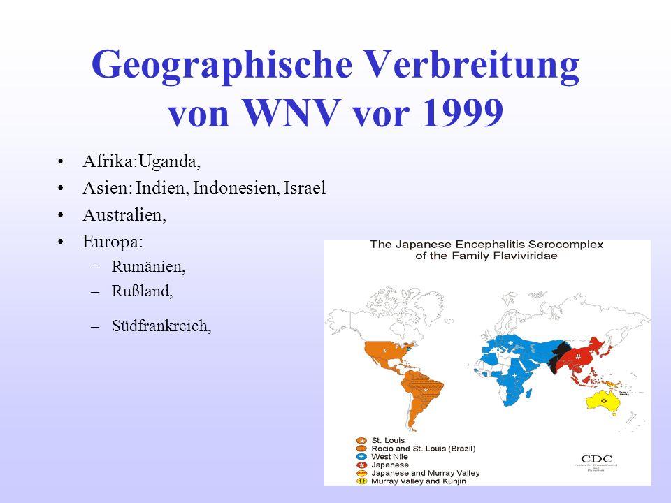 Geographische Verbreitung von WNV vor 1999